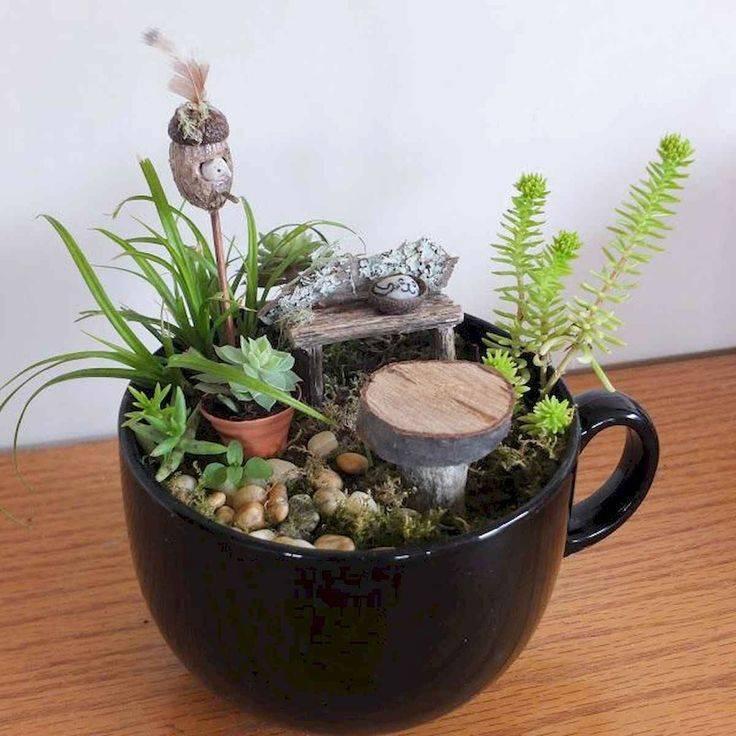 Как своими руками создать мини сад в горшке: делаем красивые композиции миниатюрных садовых участков