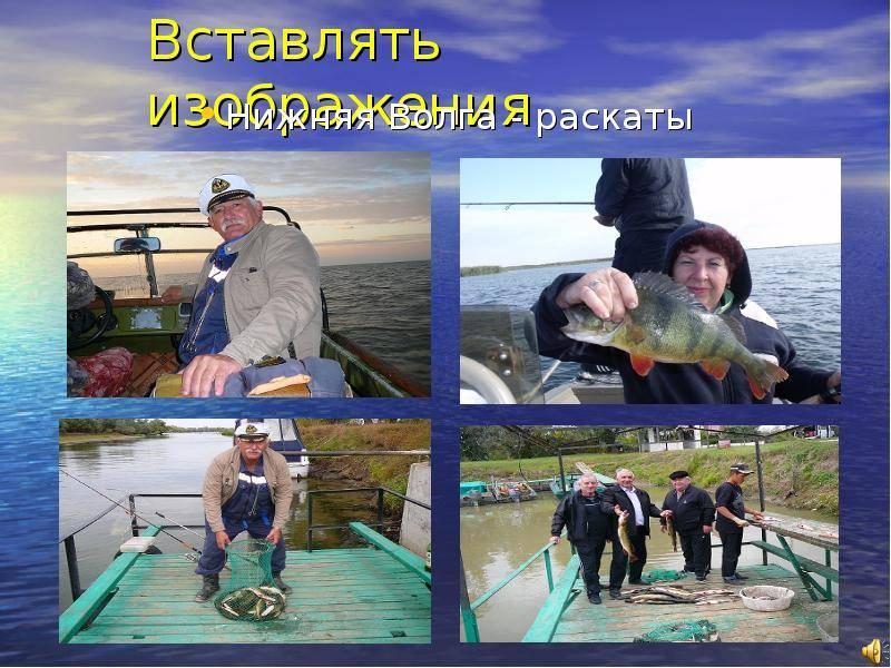 «дорогой, я на рыбалку». профессиональная рыбачка - о неженском спорте