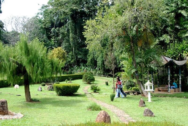 Дом орхидей в Королевском ботаническом саду, Перадения, Шри-Ланка как хобби и увлечение