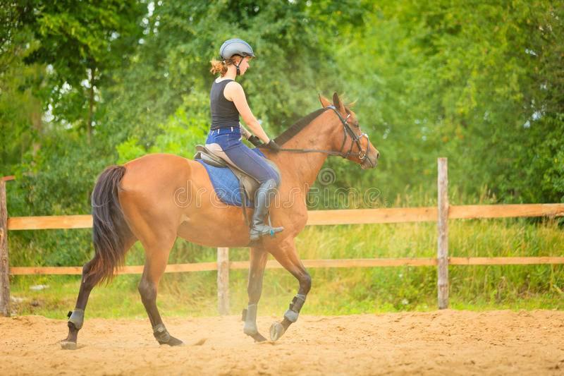 Верховая езда как хобби и увлечение
