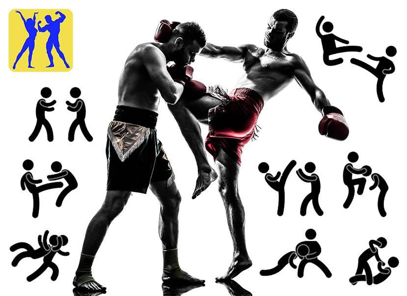 Глава 2. ао «тайский бокс»