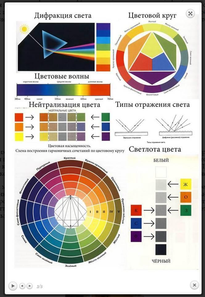 Изучаем основы колористики: строение волоса, уровень глубины тона, фон осветления и его нейтрализация