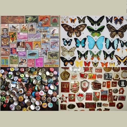 Коллекционирование как хобби. что коллекционируют люди?