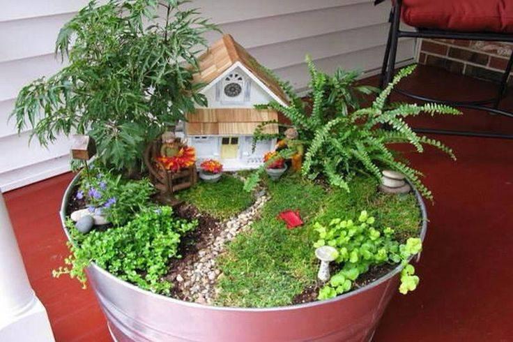 Выбираем растения для мини-садика в горшке русский фермер