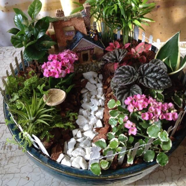 Как сделать сад в горшке своими руками: пошаговый мастер-класс по изготовлению мини-сада