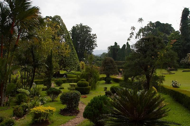 Королевский ботанический сад в перадении – среди удивительных растений – так удобно! traveltu.ru