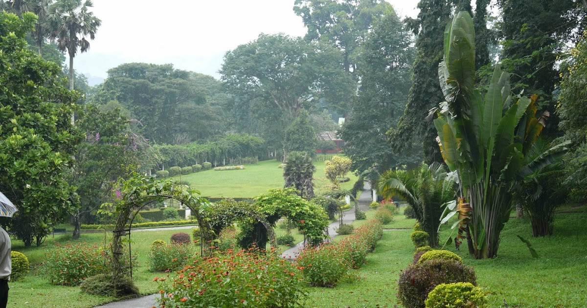 Королевский ботанический сад в перадении » journey-assist - много фото