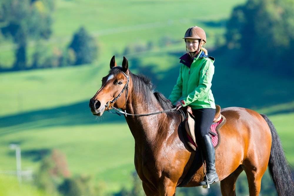 Лошадь как лекарство: верховая езда и иппотерапия. иппотерапия для детей - от чего помогает