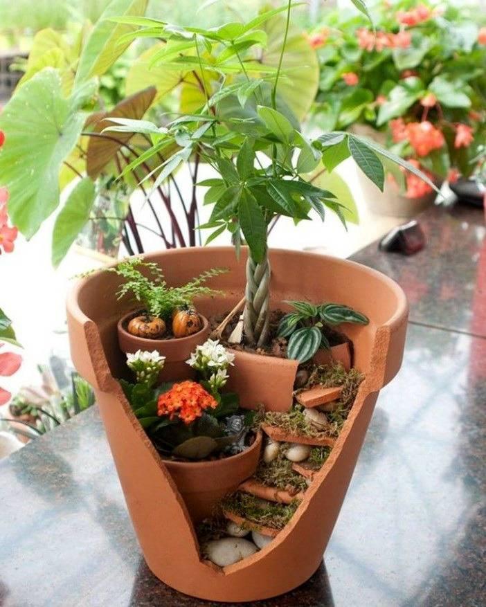 Мини-сад в горшке своими руками   идеи для дома   home-ideas.ru