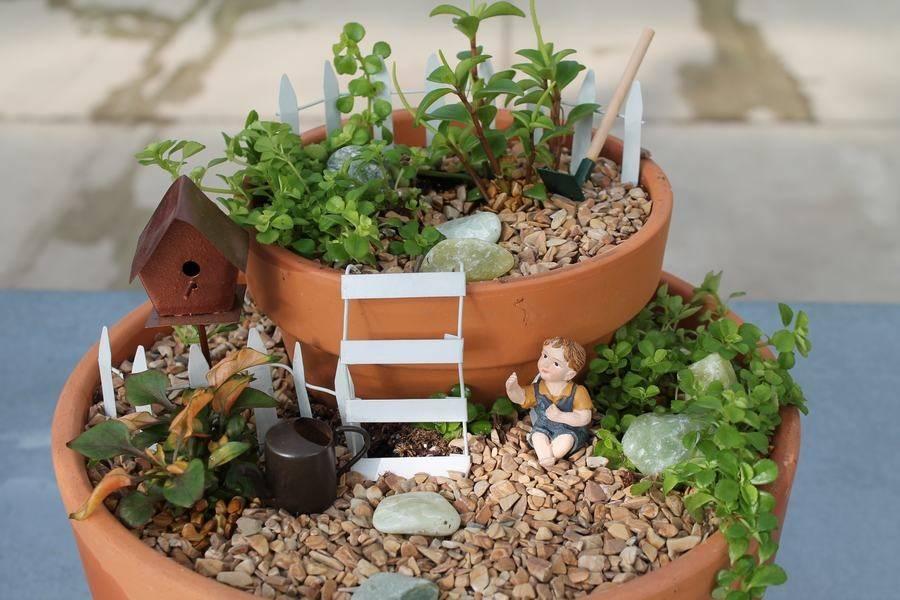 Мини-сад в горшке своими руками