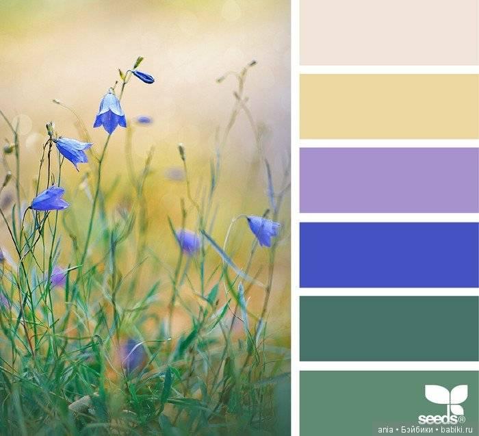 Сочетание цветов в одежде: как правильно подобрать цветовую гамму для своего образа?