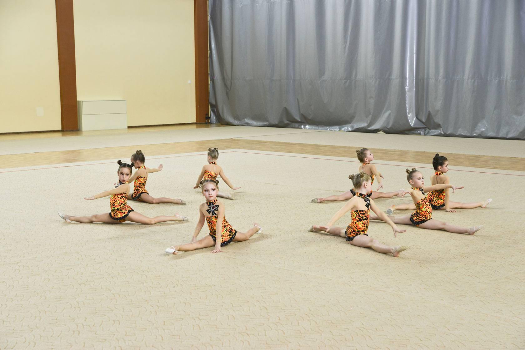 Эстетическая гимнастика