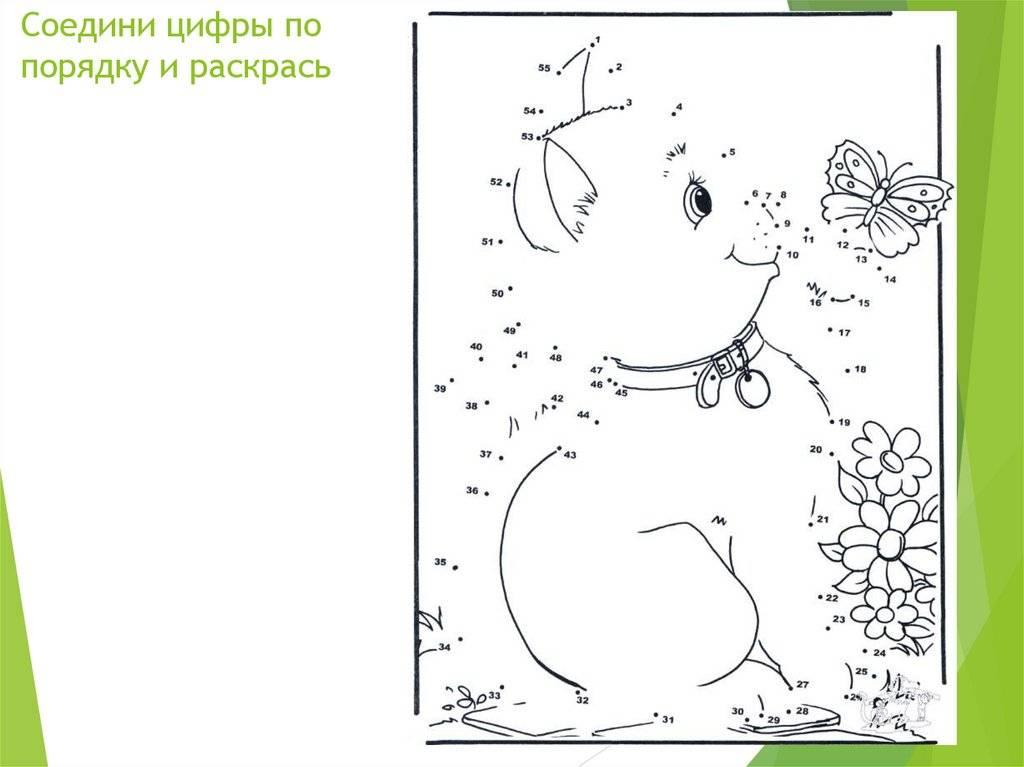 Как рисование по номерам помогает в развитии ребенка