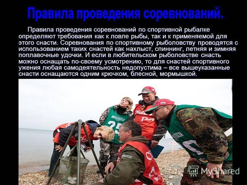 Рыбалка как хобби и спорт