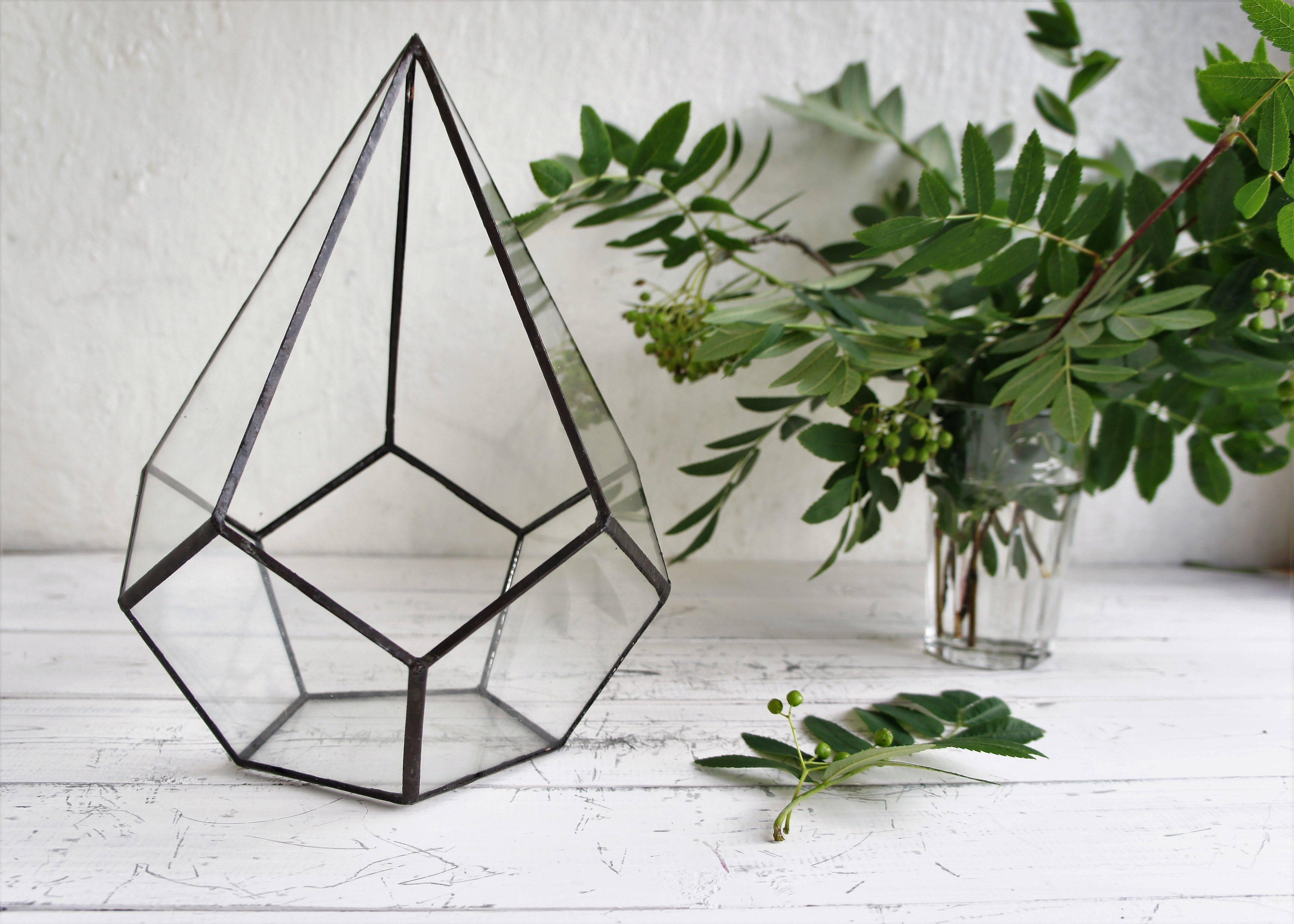 Как сделать флорариум своими руками для начинающих, и что для этого нужно: выбор растений и декоративных камней, оригинальные идеи необычных флорариумов с пошаговой инструкцией
