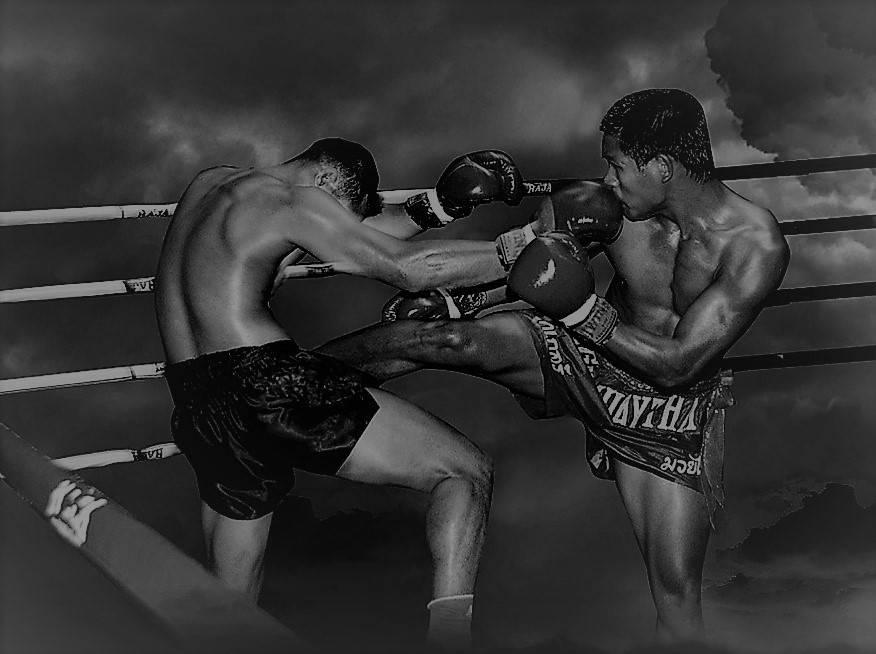 Пот и кровь: сергей бразил из brutto о тайском боксе