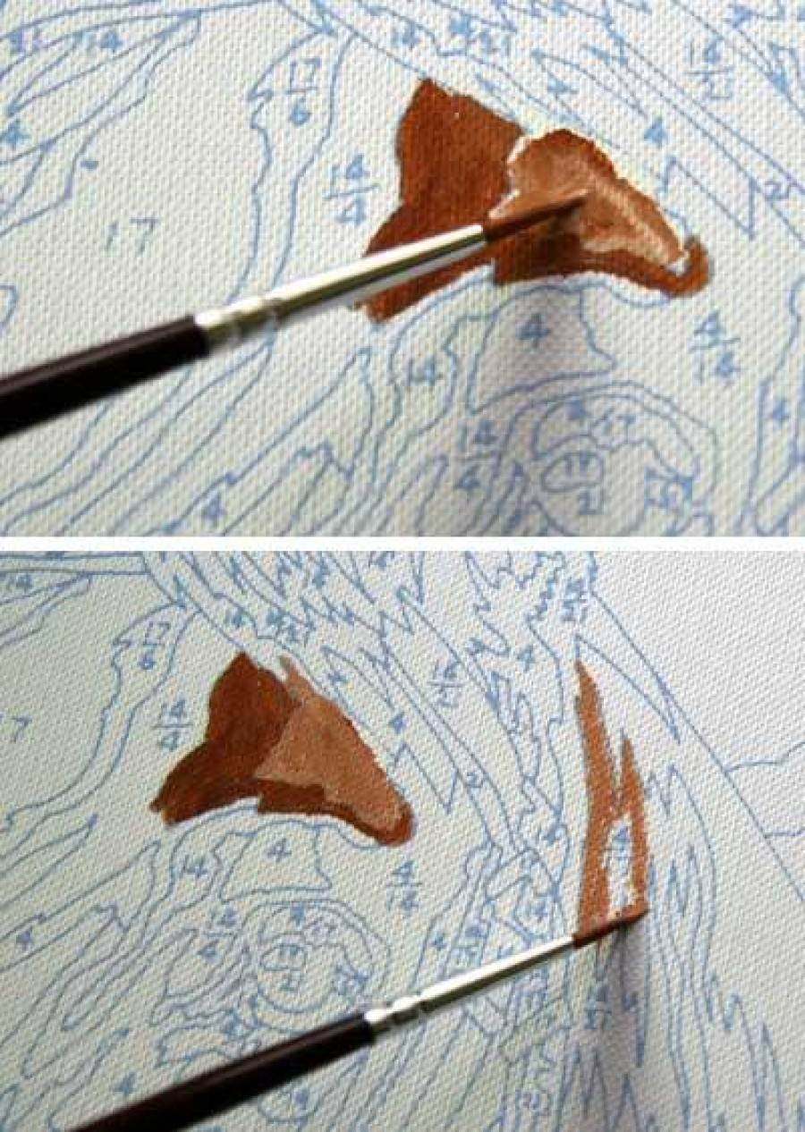 Рисуем картины по номерам на холсте или на картоне