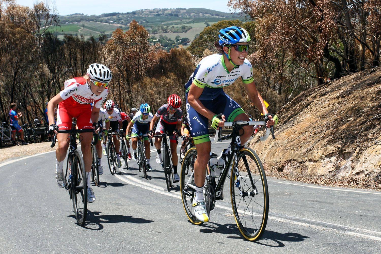 Велоспорт: виды велосипедного спорта, гонки по шоссе и соревнования на велосипедах по треку с препятствиями. что такое bmx и маунтинбайк?