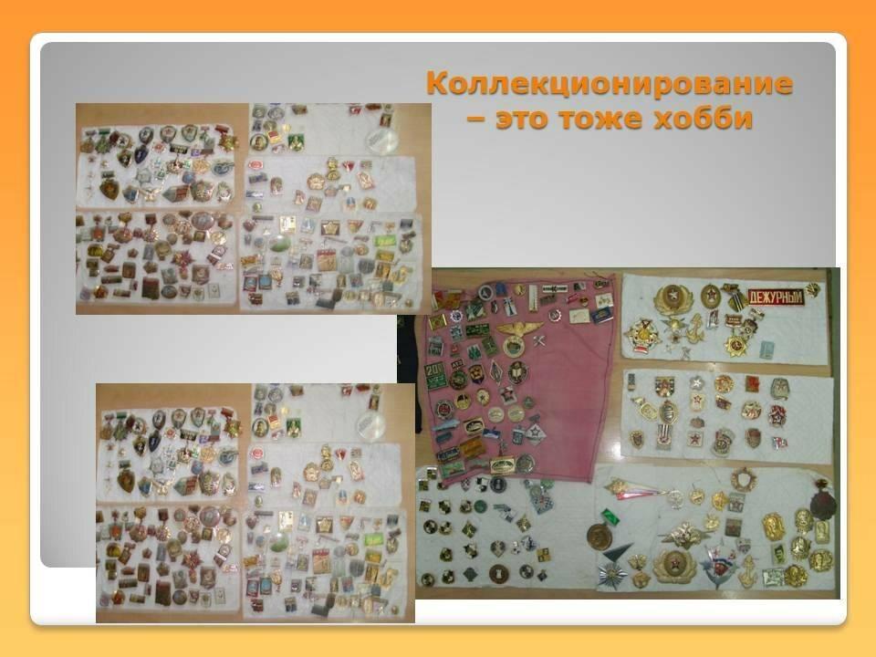 Энтомологическое коллекционирование как хобби и увлечение