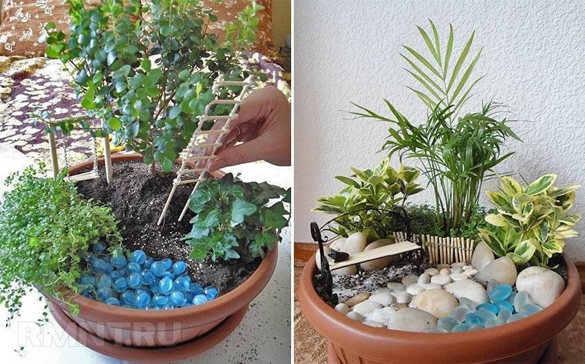 24 идей для создания мини-сада в домашних условиях
