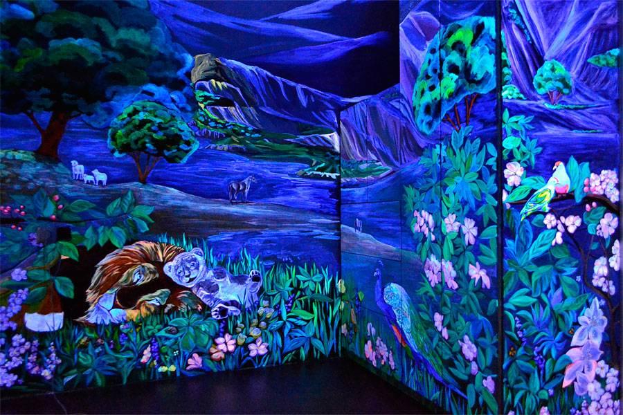 Флуоресцентная краска: виды, свойства, применение и техника нанесения